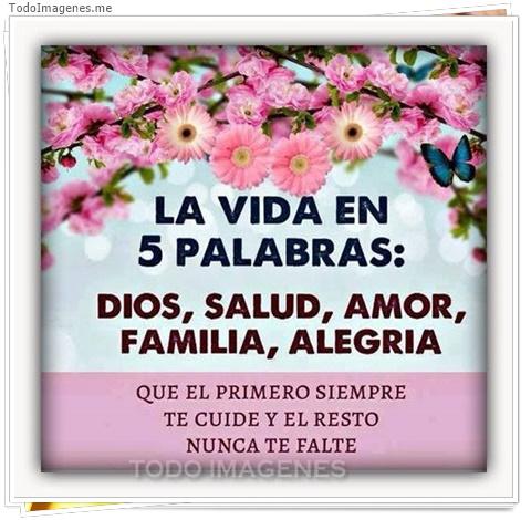 La vida en 5 palabras: Dios, Salud, Amor, Familia, Alegría. Que el primero siempre te cuide y el resto nunca te falte.