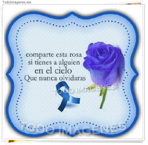Comparte esta rosa si tienes a alguien en el cielo que nunca olvidarás