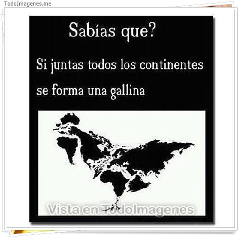 Sabías que ? Si juntas todos los continentes se forma una gallina