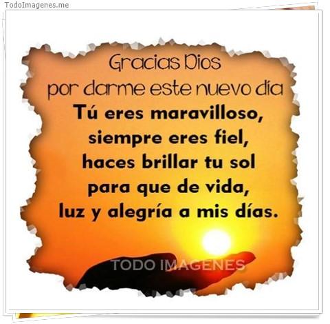 Gracias Dios por darme este nuevo dia, Tú eres maravilloso siempre eres fiel, haces brillar tu sol para que de vida, luz y alegría a mis días