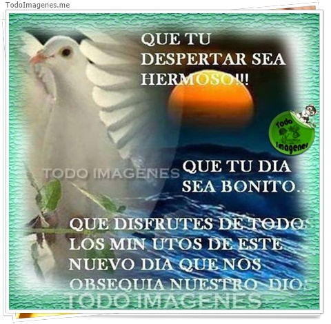 QUE TU DESPERTAR SEA HERMOSO!! QUE TU DIA SEA BONITO..QUE DISFRUTES DE TODO LOS MINUTOS DE ESTE NUEVO DIA QUE NOS OBSEQUIA NUESTRO DIOS