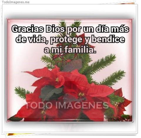 Gracuas Dios por un día más de vida, protege y bendice a mi familia