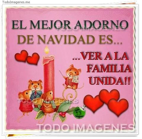 EL MEJOR ADORNO DE NAVIDAD ES...VER A LA FAMILIA UNIDA !!