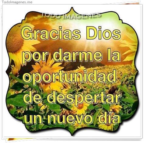 Gracias Dios por darme la oportunidad de depertar un nuevo dia