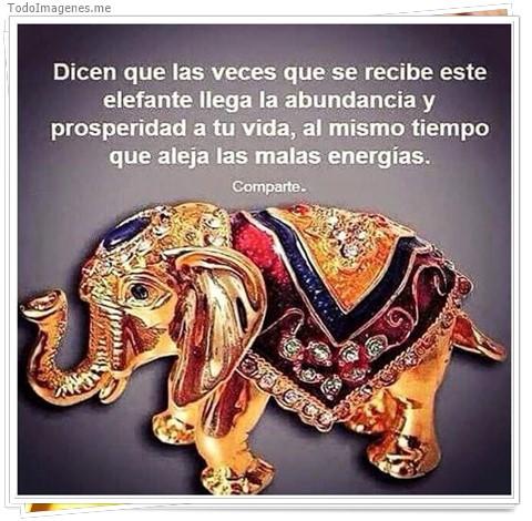 Dicen que las veces que se recibe este elefante llega la abundancia y prosperidad a tu vida, al mismo tiempo que aleja las malas energias. Comparte