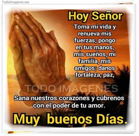 Hoy Señor Toma mi vida y renueva mis fuerzas, pongo en tus manos, mis sueños, mi familia, mis amigos; danos fortaleza, paz. Sana nuestros corazones y cúbrenos con el poder de tu amor. MUY BUENOS DIAS