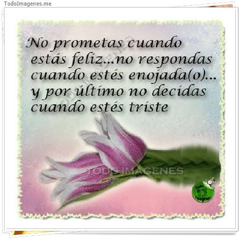 No prometas cuando estás feliz...no respondas cuando estñes enojada(o)...y por último no decidas cuando estés triste.