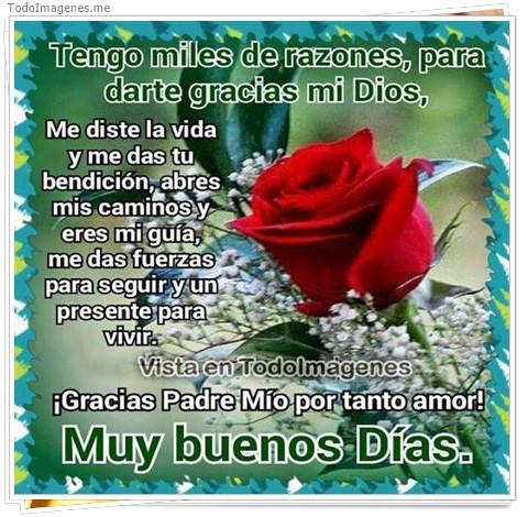 Tengo miles de razones, para darte gracias mi Dios, Me diste la vida y me das tu bendición, abres mis caminos y eres mi guía, me das fuerzas para seguir y un presente para vivir. ¡ Gracias Padre Mio por tanto amor ! Muy bueno Dias