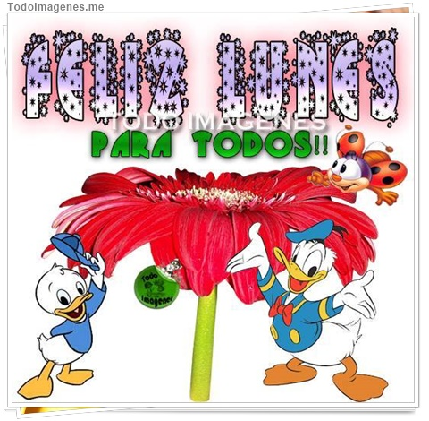 FELIZ LUNES PARA TODOS !!