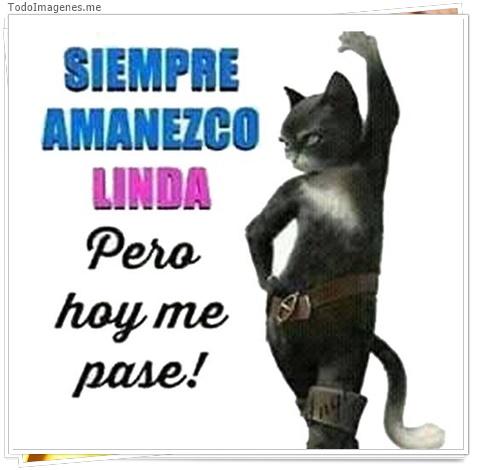 SIEMPRE AMANEZCO LINDA pero hoy me pase !