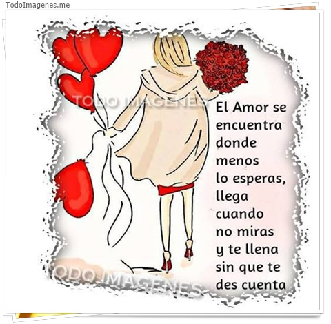 El amor se encuentra donde menos lo esperas, llega cuando no miras y te llena sin que te des cuenta