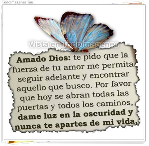 Amado Dios: te pido que la fuerza de tu amor me permita seguir adelante y encontrar aquello que busco, Por favor que hoy se abran todas las puertas y todos los caminos, dame luz en la oscuridad y nunca te apartes de mi vida
