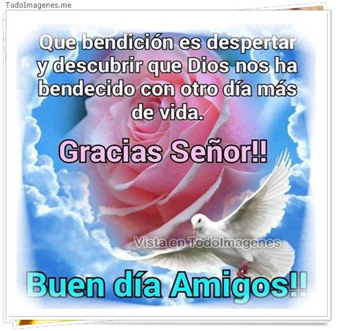 Que bendición es despertar y descubrir que Dios nos ha bendecido con otro dias mas de vida. Gracias Señor!! Buen día Amigos!!