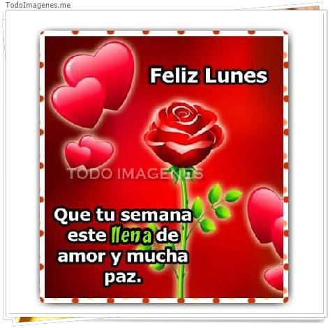 Feliz Lunes Que tu semana este llena de amor y mucha paz.