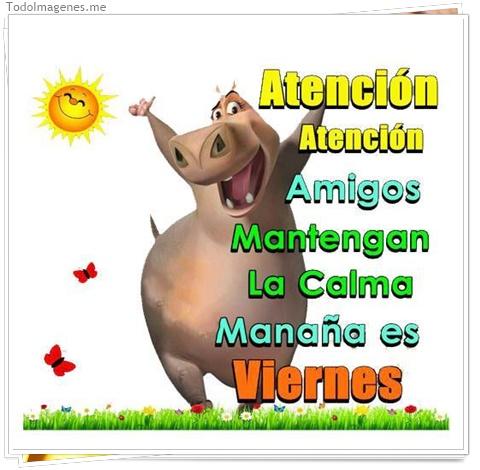 Atención Atención Amigos Mantengan La Calma Mañana es Viernes