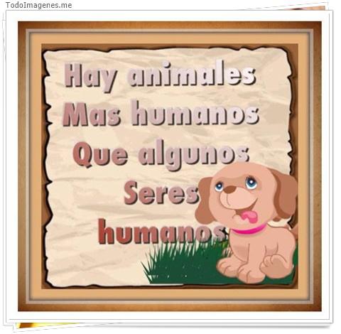 Hay animales mas humanos que algunos seres humanos