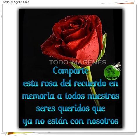 Comparte esta rosa del recuerdo en memoria a todo nuestros seres queridos que ya no están con nosotros