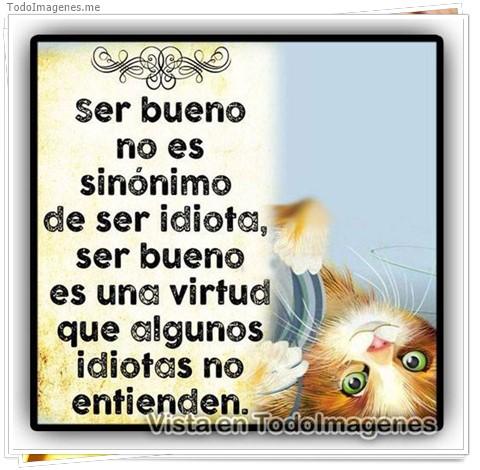 ser bueno no es sinónimo de ser idiota, ser bueno es una virtud que algunos idiotas no entienden