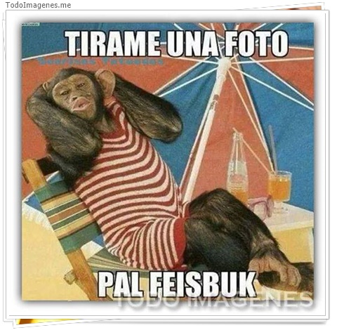 TIRAME UNA FOTO PAL FEISBUK