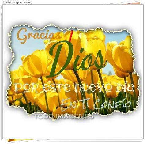 Gracias Dios por este nuevo día en ti confío