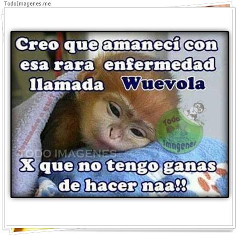Creo que amaneci con esa rara enfermedad llamada wuevola x que no tengo ganas de hacer naa !!