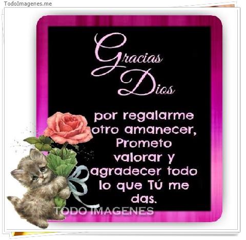 Gracias Dios por regalarme otro amanecer, prometo valorar y agradecer todo lo que tu me das