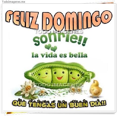 FELIZ DOMINGO sonrie !! la vida es bella QUE TENGAS UN BUEN DIA