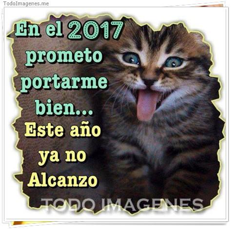 En el 2017 prometo portarme bien...Este año ya no alcanzo