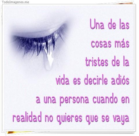 Una de las cosas más tristes de la vida es decirle adiós a una persona cuando en realidad no quieres que se vaya