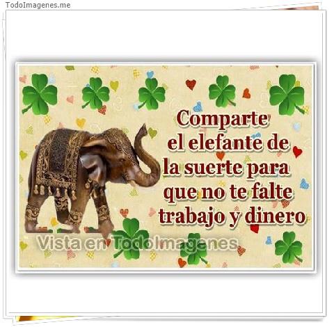Comparte el elefante de la suerte para que no te falte trabajo y dinero