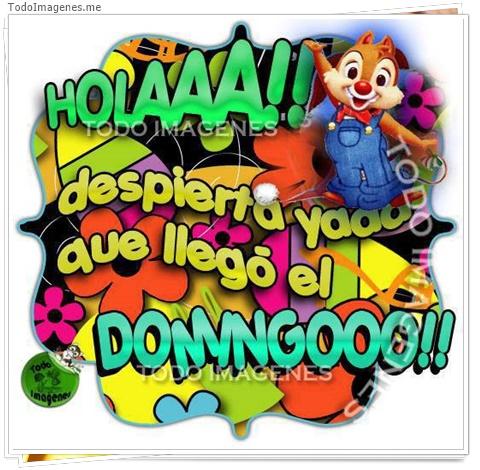 HOLAAAA despierta yaaa que llego el DOMINGOO!!