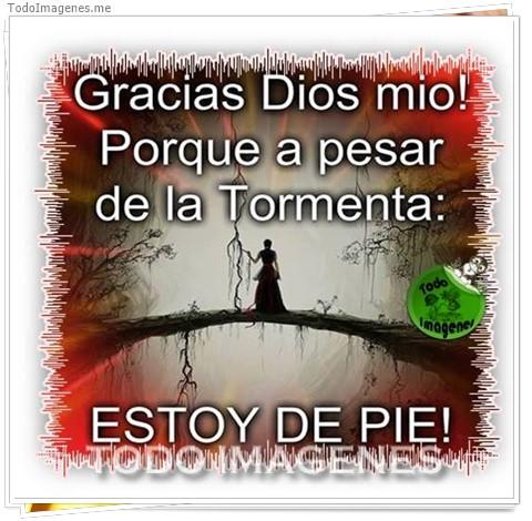 Gracias Dios mio ! Porque a pesar de la Tormenta: ESTOY DE PIE !
