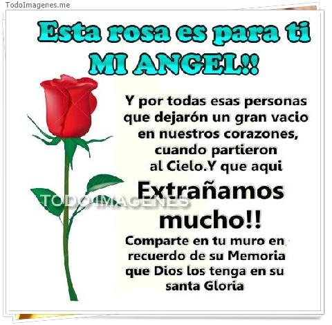 Esta rosa es para ti MI ANGEL!! Y por todas esas personas que dejaron un gran vacio en nuestros corazones, cuando partieron al Cielo.Y que aqui Extrañamos mucho!! Comparte en tu muro en recuerdo de su Memoria que Dios los tenga en su Santa Gloria