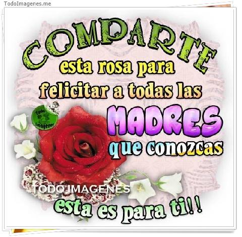COMPARTE esta rosa para felicitar a todas las MADRES que conozcas esta es para ti !!
