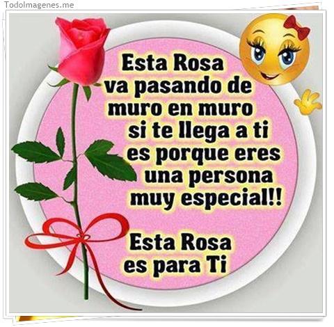 Esta Rosa va pasando de muro en muro si te llega a ti es porque eres una persona muy especial !! Esta Rosa es para Ti
