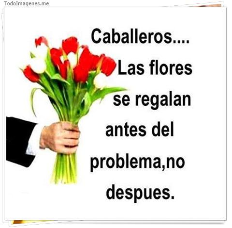Caballeros...las flores se regalan antes del problema no despues
