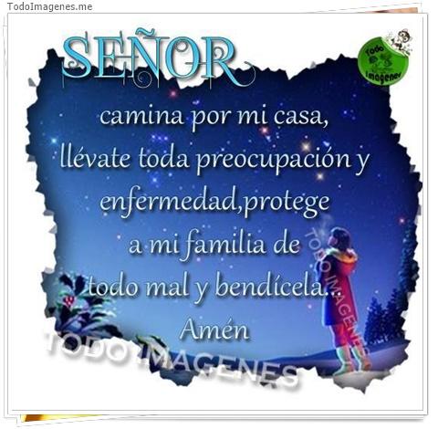 SEÑOR camina por mi casa, llévate toda preocupación y enfermedad, protegele a mi familia de todo mal y bendicela. Amen